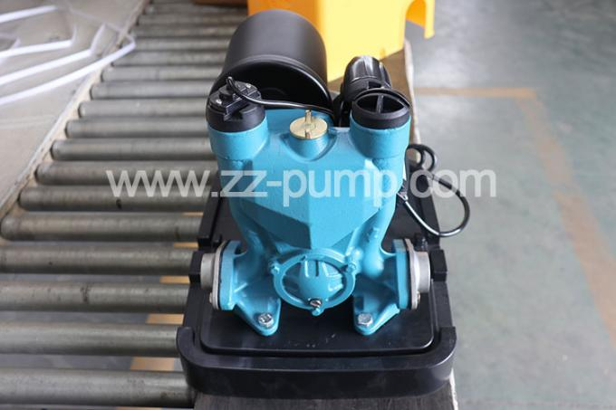 Portable Clean Automatic Water Pump 0.25KW 1.8 Pressure Bar For Irrigation Farming