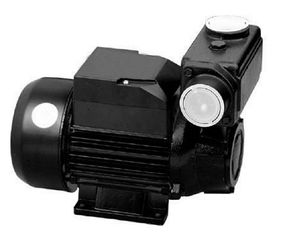 Tps Series Domestic Water Pumps Precision Casting Motor