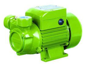 China Agricultural Electric Peripheral Water Pump High Pressure 0.5HP Cast Iron Body supplier