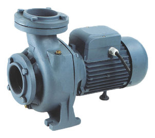 China Non Aggressive Liquids Agricultural AC Electric Irrigation Pumps For Irrigation supplier