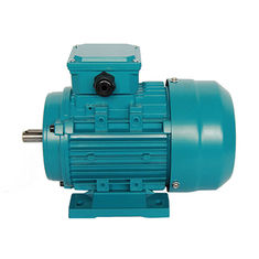 China 2 Pole Electric Portable Water Pump 50hz Ac Motor Capacitor Running 220v MY711-2 supplier