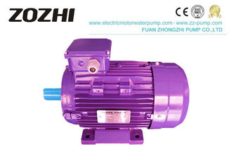 China 380V 3 Phase Induction Motor IEC Standard Power Supply Type Low Noise / Vibration supplier