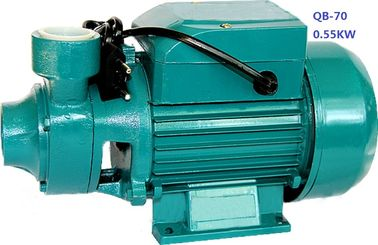 China 0.75HP 0.55KW Domestic Clean Water Pump For Pool Pumping / Garden Sprinkling factory