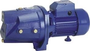China Garden Sprinkling Self - Priming Electric Motor Water Pump JSP-255A 0.75HP factory