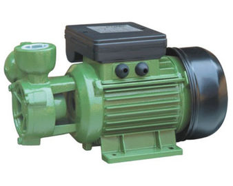 China DB Peripheral Electric Engine Water Pump 0.37kw Single Phase 50HZ factory