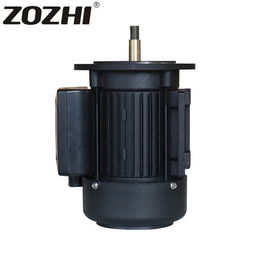 China 1.5Hp Single Phase Electric Motor , 220V Speed 2800 Swimming Pool Pump Motor MYT801-2 factory