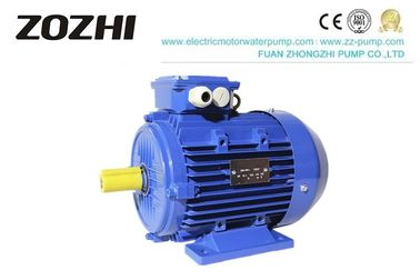 China Three Phase AC Electric Asynchronous Motor IE3 Series Premium Efficiency 60Hzv factory