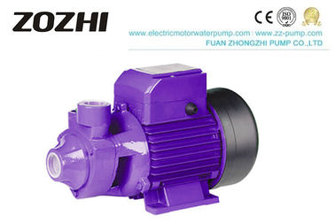China Domestic Electric Clean Water Pump 2850RPM Speed 0.75KW 12 Months Warranty factory